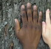 noir et blanc mains soft.JPG